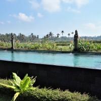 Bali - De Seminyak à Ubud et aux Padi Bali Eco Villas, petit paradis sur terre