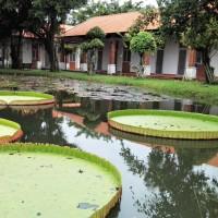 Vietnam - Détour par la campagne de Saigon et le temple de Cao Dai