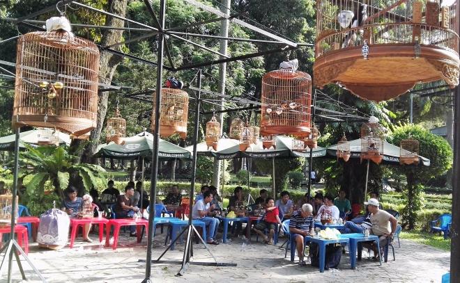 bird cafe Par Tao Dan Ho Chi Minh City Vietnam
