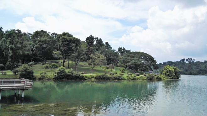 Le par du Mac Ritchie Reservoir Singapour