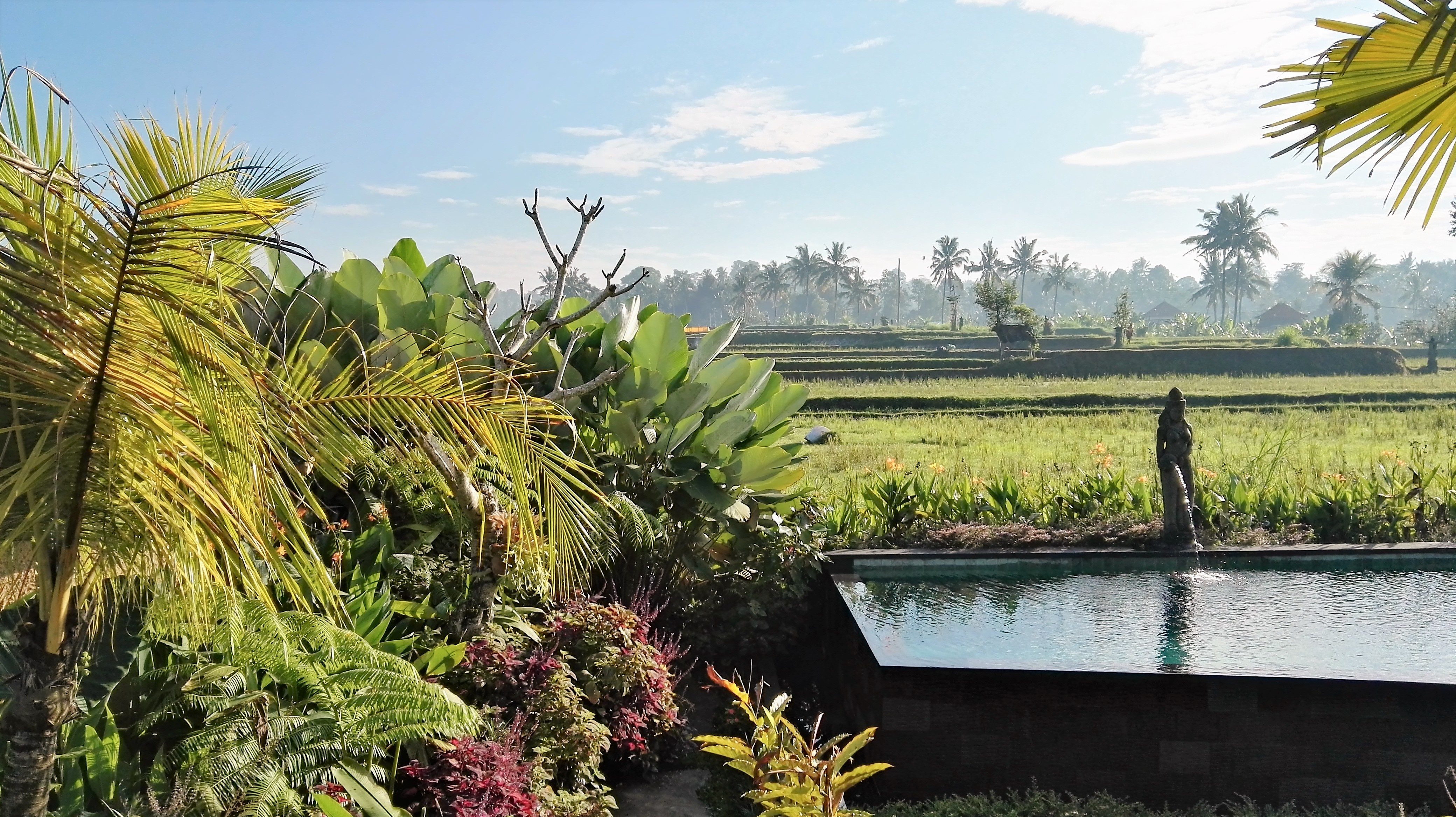 Bali Ubud Padi Bali Eco Villas Lemonandjuice (23).jpg