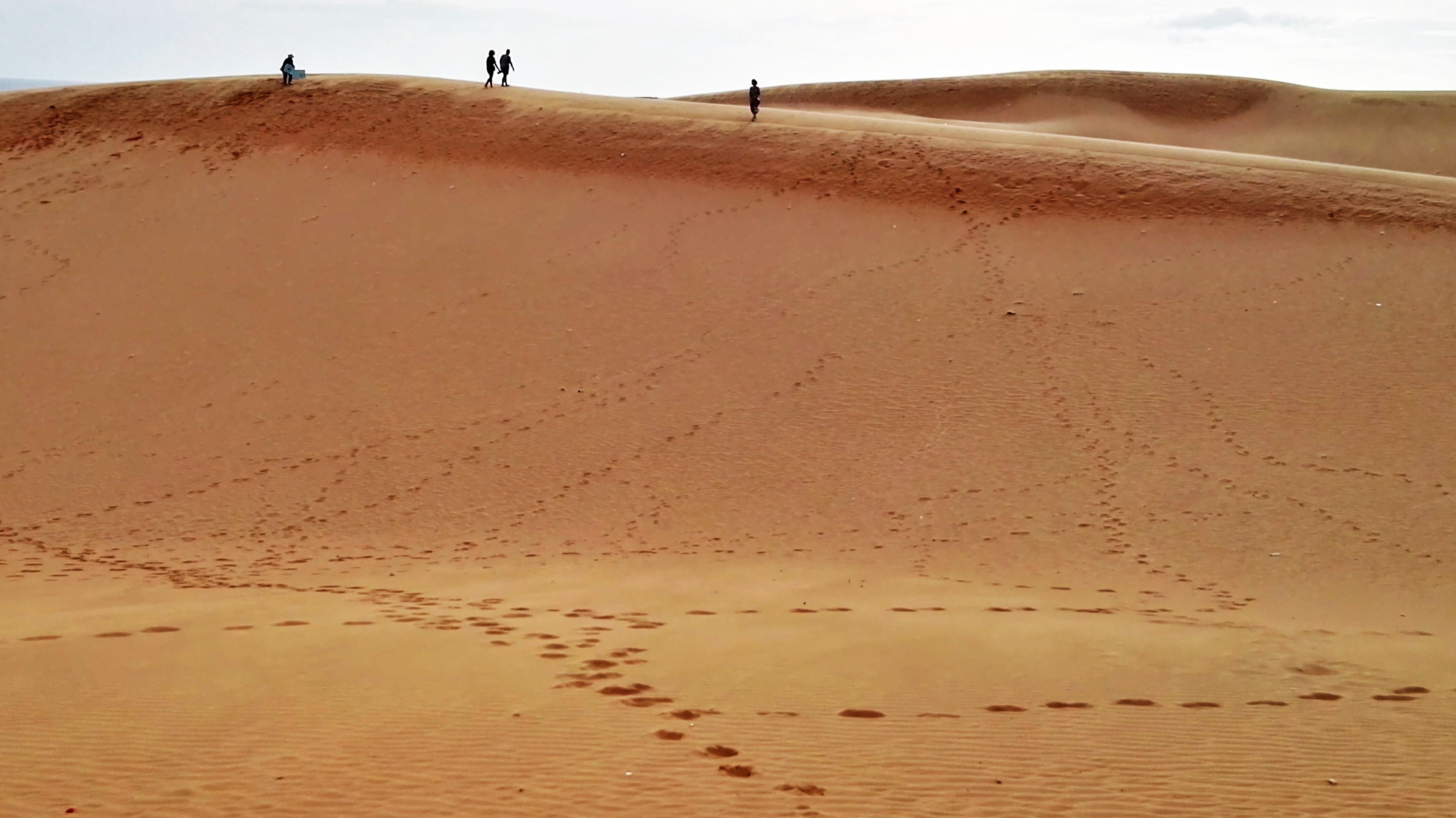 En haut des dunes de Mui Ne au Vietnam