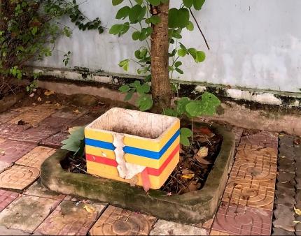 Poubelle polystyrene saigon ho chi minh city vietnam